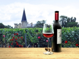 Bordeaux and Barging…The Perfect Vacation!