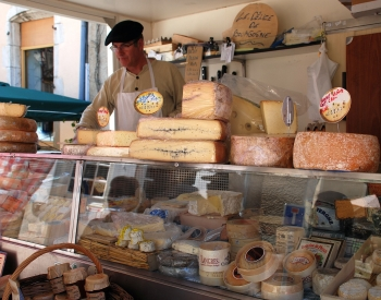Tasty Cheeses of France